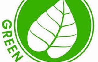 green cincauu